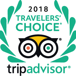 Trip Advisor Travelers Choice Award